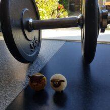De 10 meest gestelde workout vragen!
