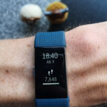 Review: Fitbit Charge 2