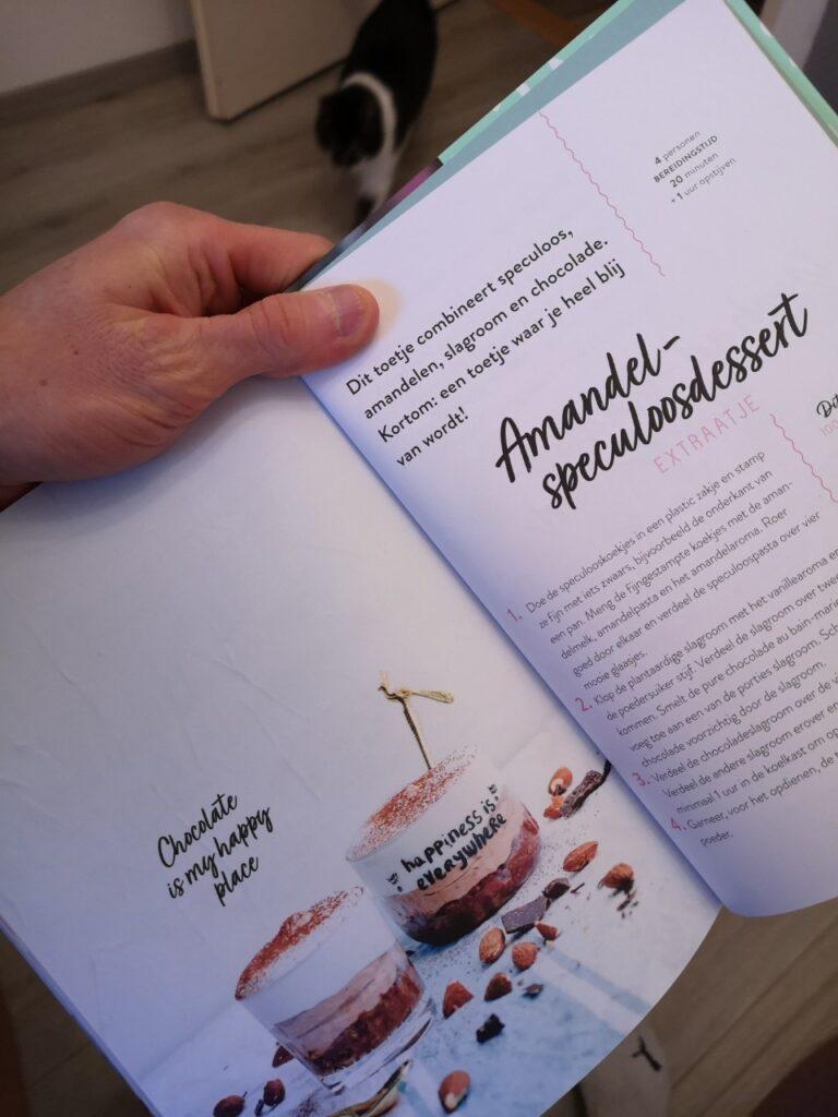 Op deze pagina een bladzijde recepten uit het boek Vegan Vibes