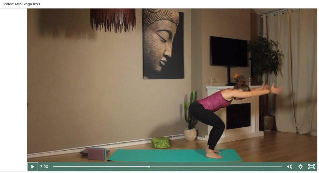 Op deze foto zie je de Mini Yoga lessen