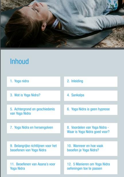 Op deze foto zie je de inhoud van het Yoga Nidra Instructie Ebook